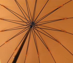 骨の多い傘