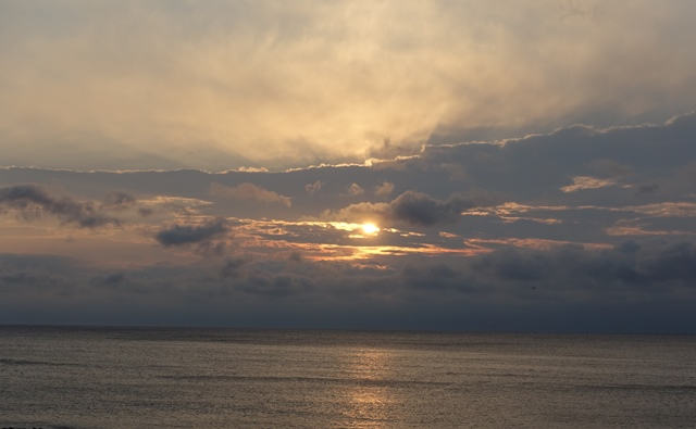 河津浜の朝